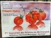img_0219expo tomate
