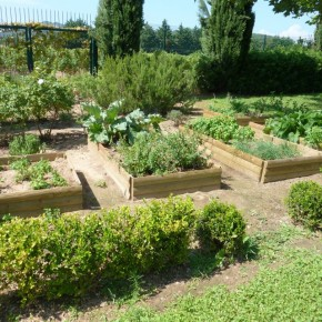Tasting and vegetable gardens