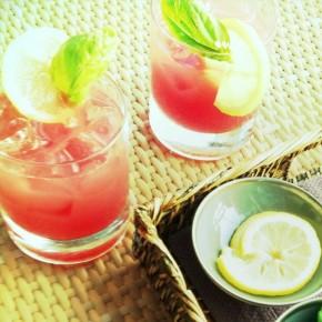 Watermelon Basil Gin Fizz