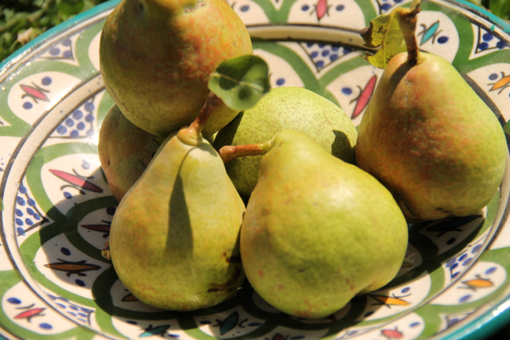 Green platter of pears in the sunlight at midday