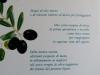 Olive Oil Menu explained