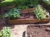 Tasting garden cleaned